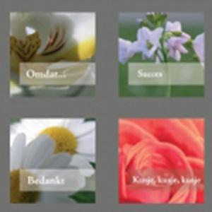 Bloom serie