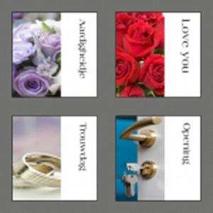 Trendy flower serie